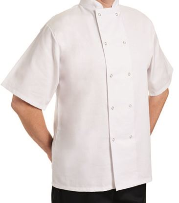 Picture of JACKET SHORT SLEEVE WHITE X LARGE 62x77CM